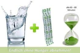 einfach ohne Hunger abnehmen